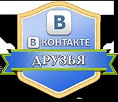 vk_druzya